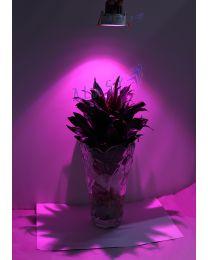 ĐÈN LED ÂM TRẦN TRỒNG CÂY 9W| GRLD10