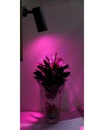 Đèn LED Trồng Cây Gắn Ray, Gắn Nỗi | GRLT10